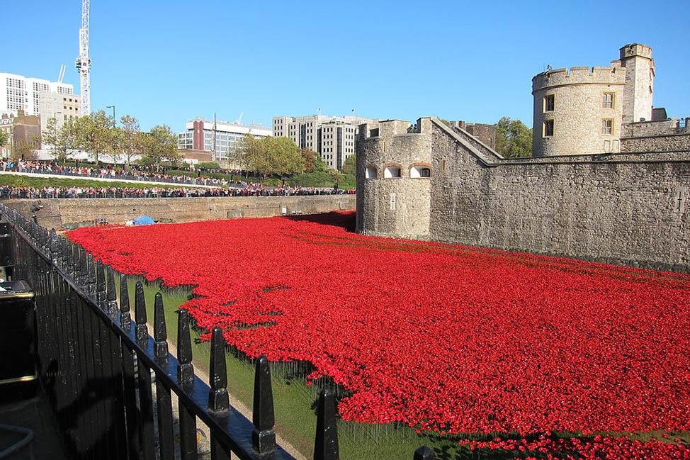 London on Remembrance Day thumbnail
