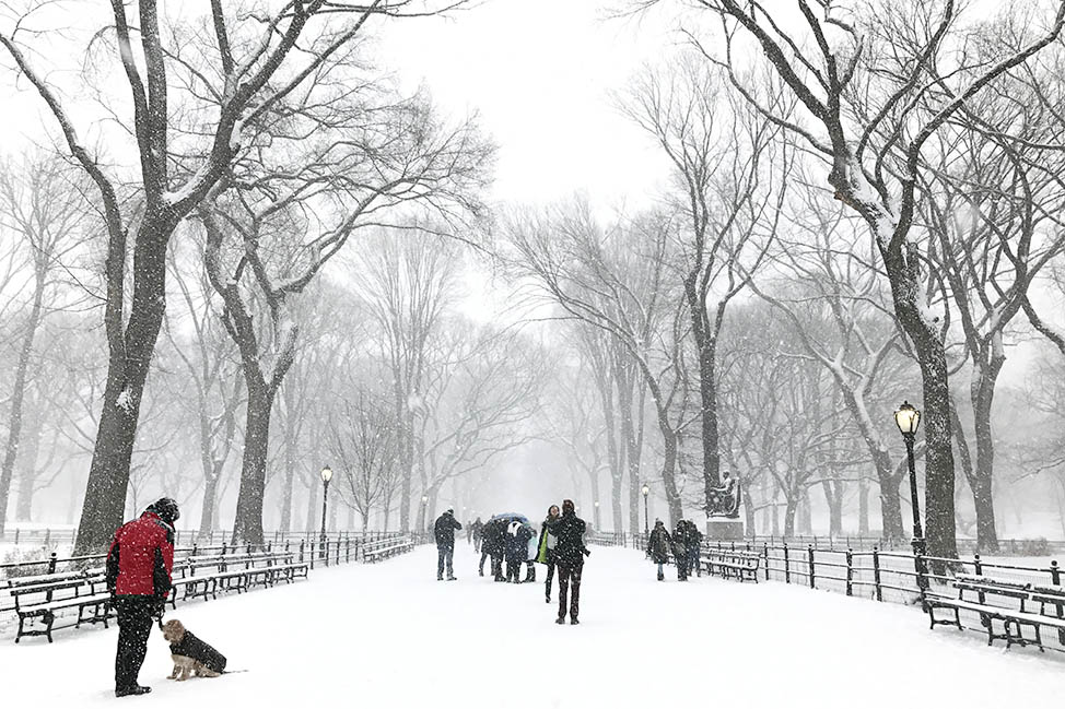 winter central park nyc