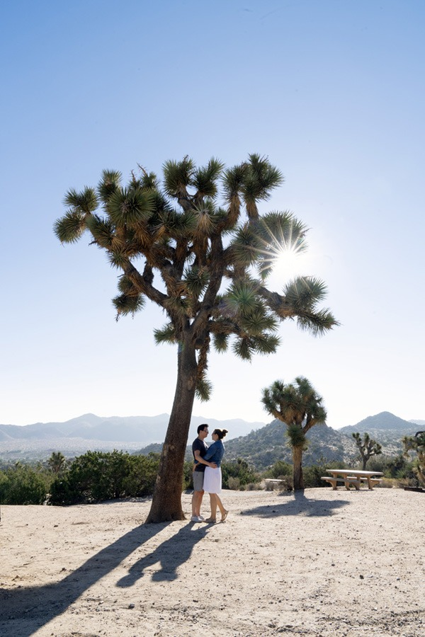 Tips for Visiting Joshua Tree National Park from Kirsten Alana