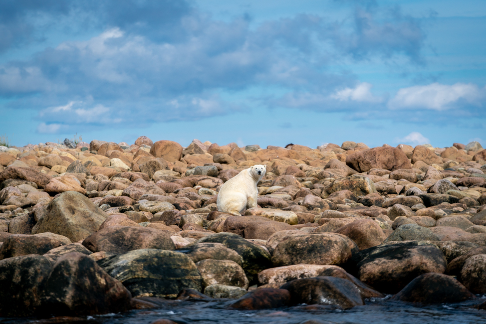 Visiting Churchill, Manitoba in Summer - Kirsten Alana