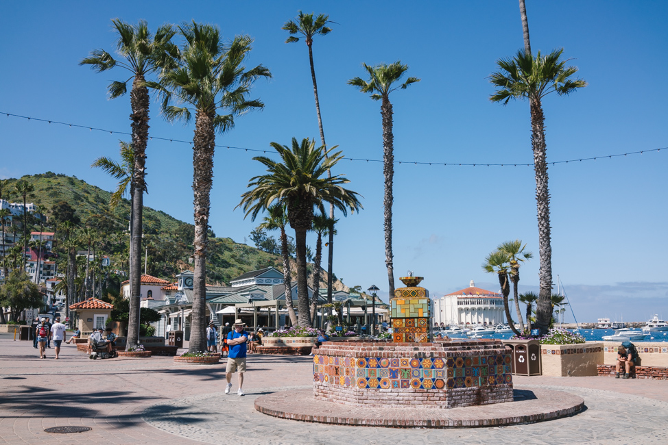 Catalina Island – 7 Tips for Your 1st Visit - Kirsten Alana