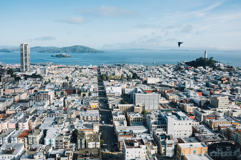 7 Reasons to Visit San Francisco in 2020 thumbnail